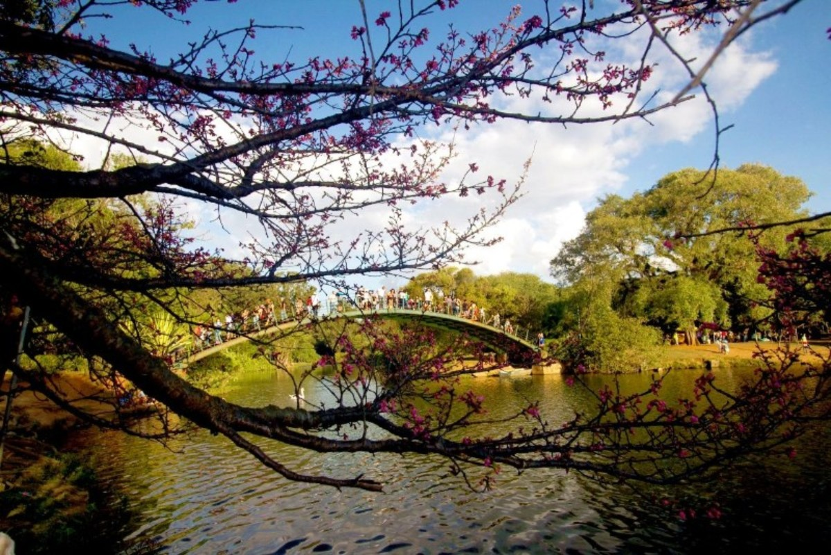 Parque do ibirapuera Sao Paulo in Brasile